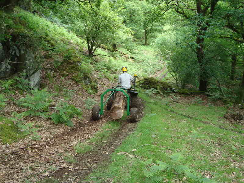 Fron Goch extracting timber from off the beaten track using Quad and Loggin
