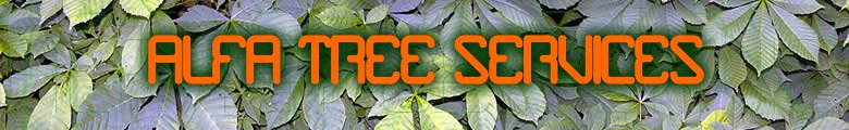 ALFA Tree Services, site logo.