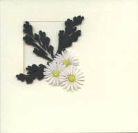 Light Arted Designer Shaped Aperture Card Kit - Daisy Foliage