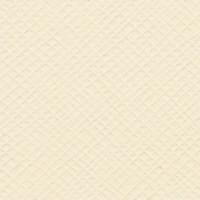 Bazzill Basics 8.5