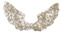 Light Arted Designs - Angel Wings