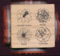 Judikins - Blossom Cube #2