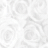 Patterned Vellum - Roses (large) - White