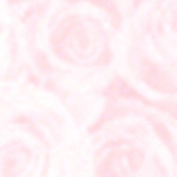 Patterned Vellum - Roses (large) - Pink