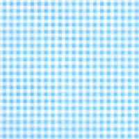 Patterned Vellum - Gingham - Blue