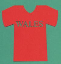 Light Arted Designs - Football T-Shirt - Wales