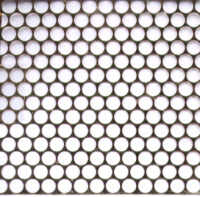 Punchinella/Sequin Waste