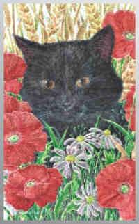 Dufex Picture Prints