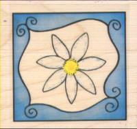 Personal Impressions - Ornamental Daisy