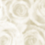 Patterned Vellum - Roses (large) - Gold