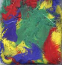Multicoloured Feathers