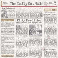 Karen Foster - Cat Chronicle
