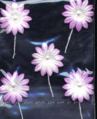 Self Adhesive Paper Flowers - Lilac/White - Large