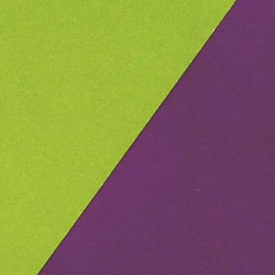 Panache Double Vision Card - Aubergine/Olive