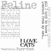 Karen Foster - Clear Overlay - Cat