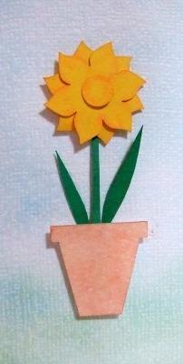 daffodil pot