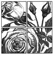 Magenta Rose Squares Wood Mounted Rubber Stamp