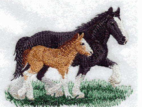 clysdale mare and foal