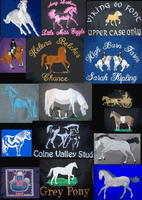5C. GERNERAL HORSE LOGO'S
