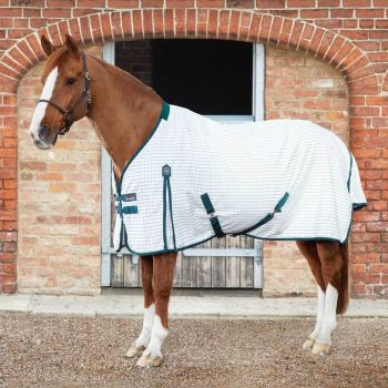 Premier Equine Checked Cotton Sheet