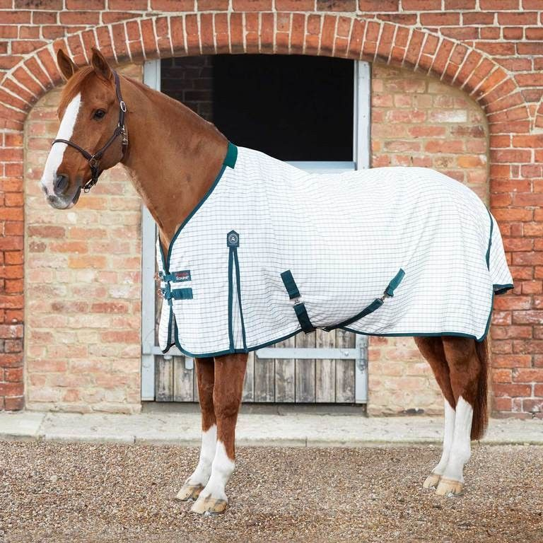 Gallop Fleece Rug includes Two Side Of Embroidery