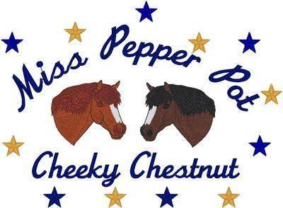 Shetland Pony Heads
