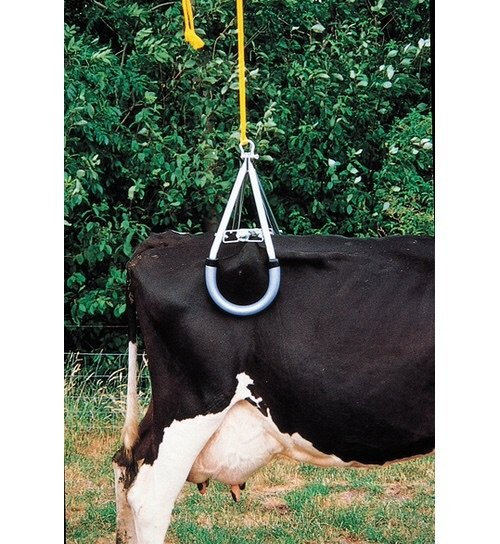 COW LIFTING & ACCESSORIES
