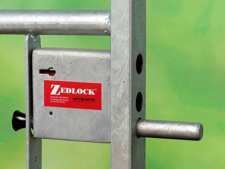 GATE SECURITY LOCKS