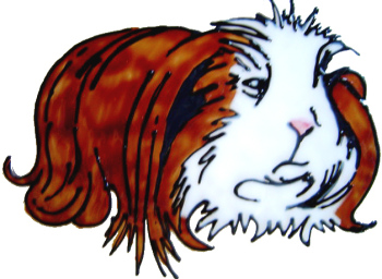 841 - Long Haired Guinea Pig handmade peelable window cling decoration