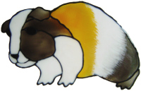 562 - Guinea Pig - Handmade peelable static window cling decoration