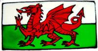 805 - Small Welsh Flag - Handmade peelable window cling decoration