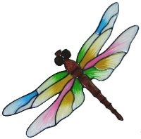 Dragonflies & Little Creatures