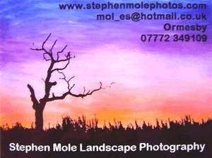 Stephen Mole Car Advert