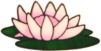 554 - Waterlily - Handmade peelable static window cling decoration
