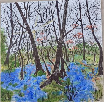 Stockley, Janet bluebells