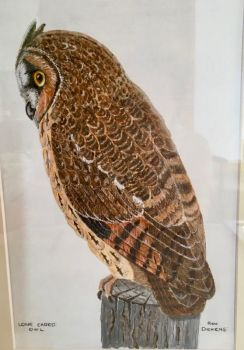 RA Dickens, Ron Long-eared owl