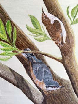 RA Dickens, Ron Nuthatch and Treecreeper