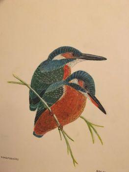 RA Dickens, Ron Kingfishers