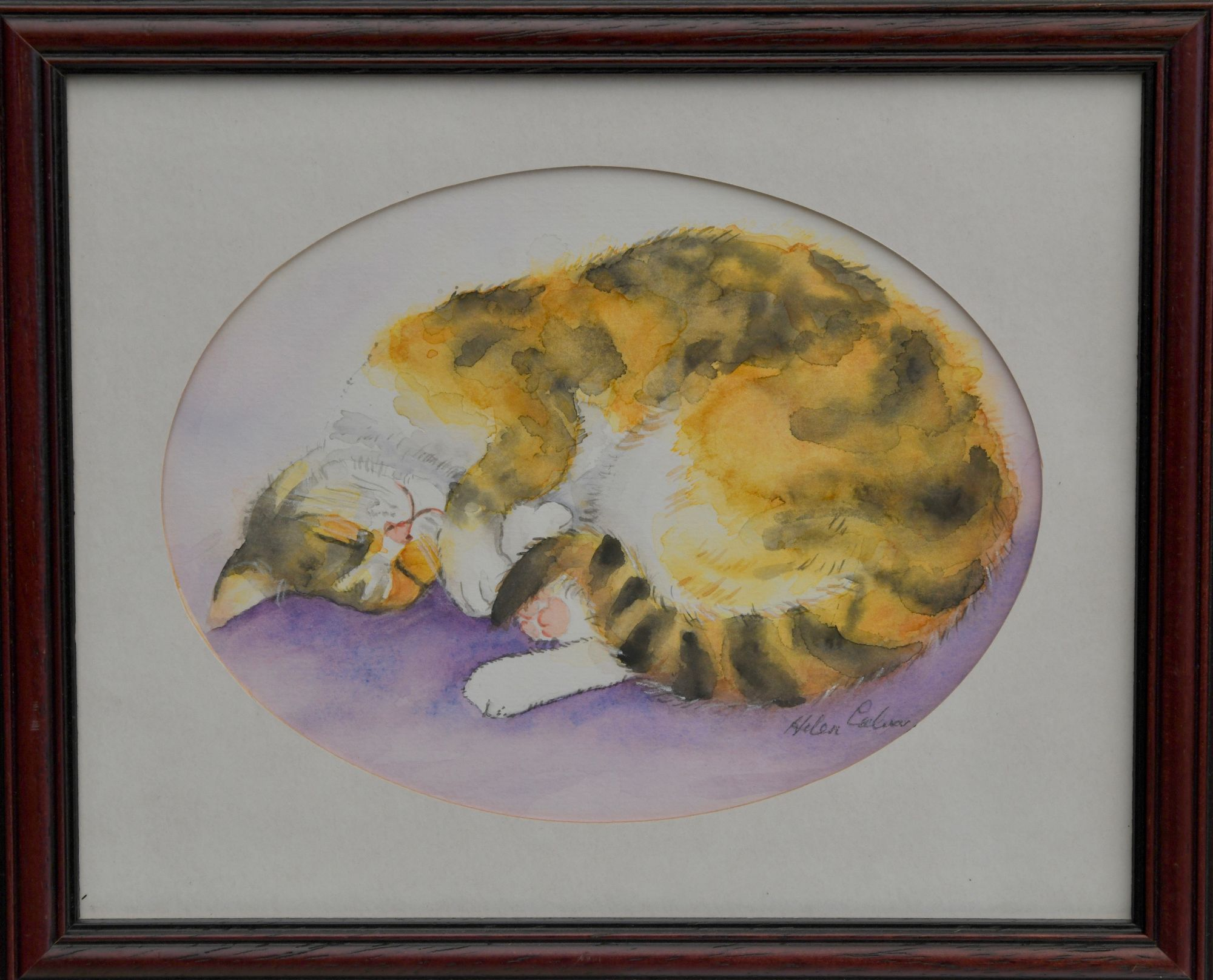 Cat Nap   ________________________________ watercolour on paper,  moulded brown wood frame with glass  (22cm x 28cm x 2cm)           £35