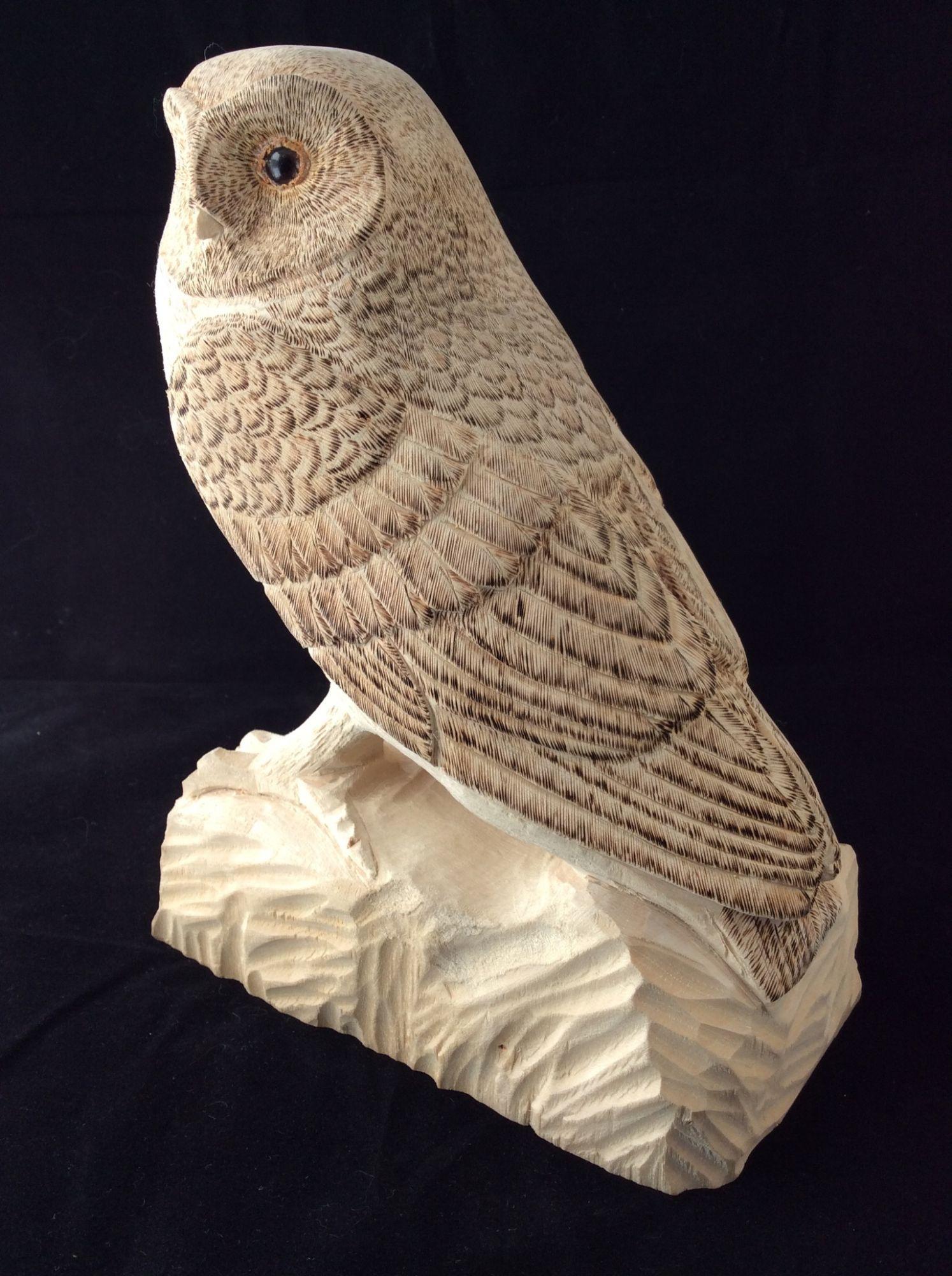 Barn Owl   ________________________________ pyrographed woodcarving   (21cm x 16cm x 10cm)           £190