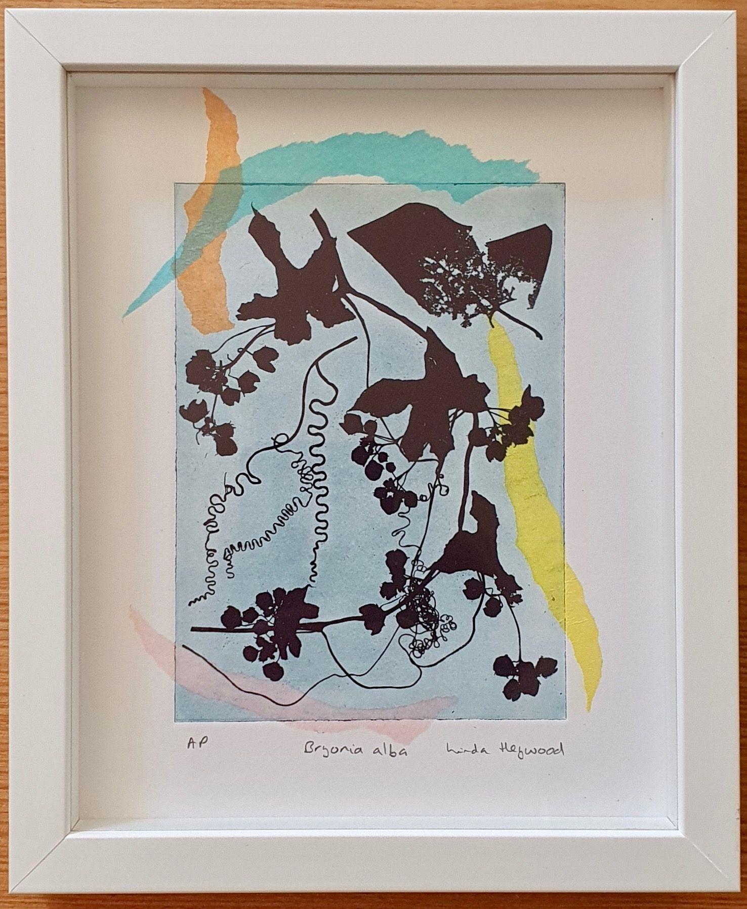 Bryonia Alba   ________________________________ polymer gravure  (21cm x 18.5cm x 2.5cm)           £120