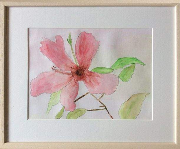 Hibiscus   ________________________________ watercolour on paper  (31cm x 38cm)           £50