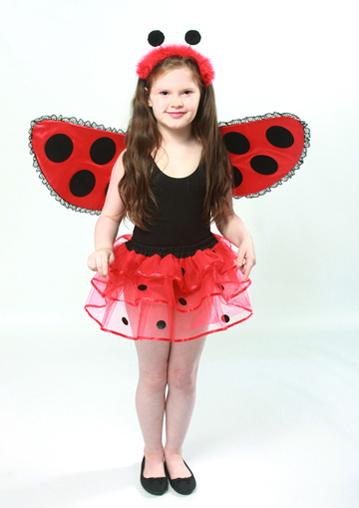 Childrens Ladybird Tutu Deluxe