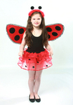 Childrens Ladybird Tutu - Deluxe 6 Layers