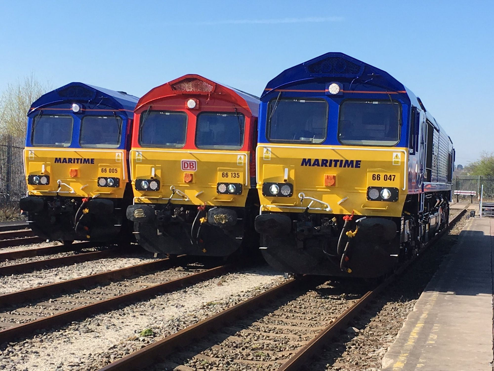 Image showing Class 66 locomotives in new Maritime Intermodal livery