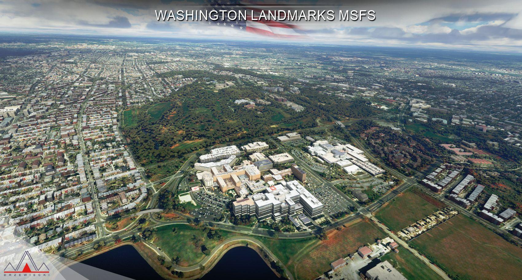 WASHINGTON3.jpg