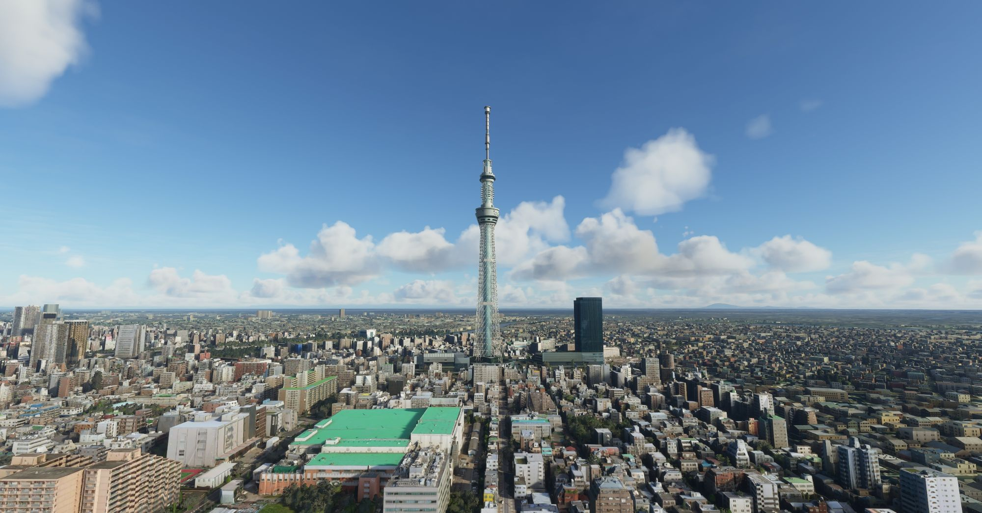 TOKYOLM6.jpg