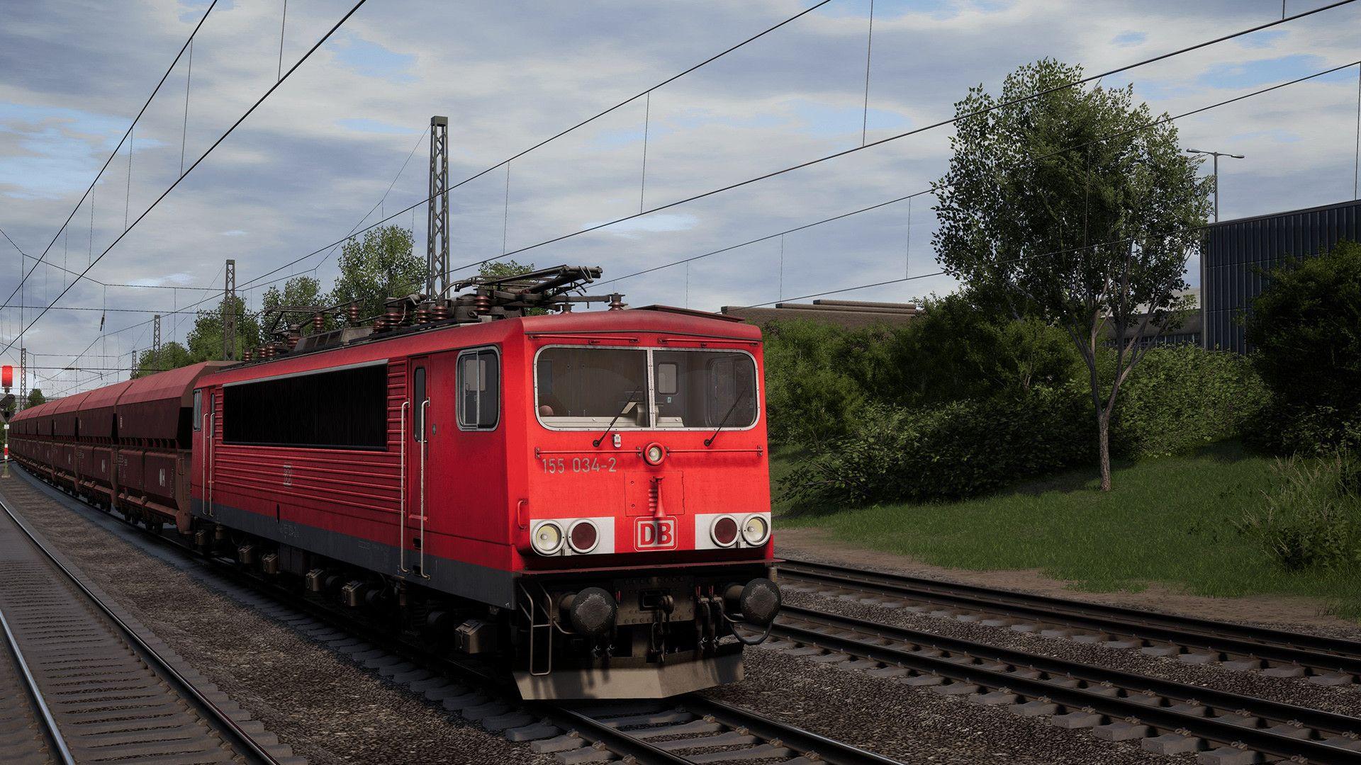 TSW21556.jpg