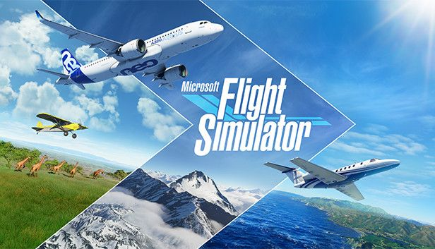Clickable image taking you to the Microsoft Flight Simulator directory at DPSimulation