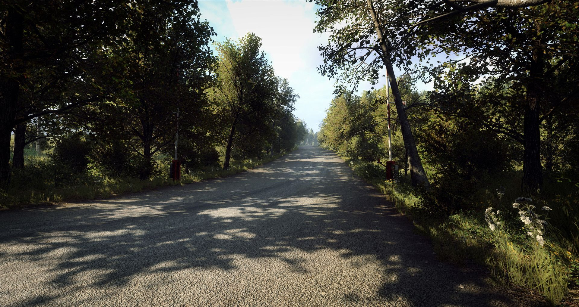 DiRT Rally 2.0 - Germany (Rally Location)